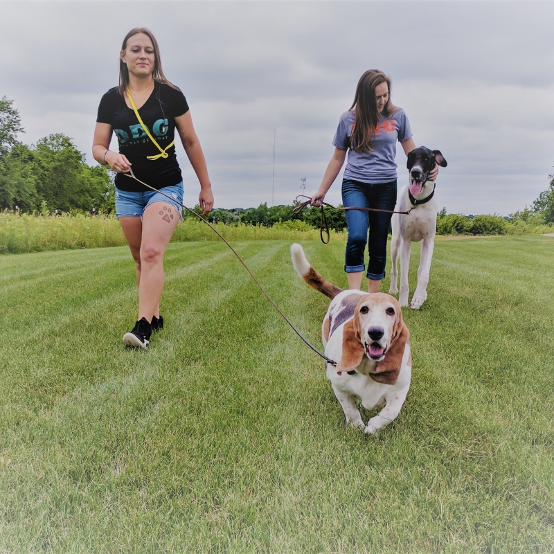 Dog Walking Services Apple Valley Minnesota